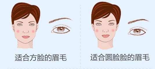 不同脸型的眉毛形状一